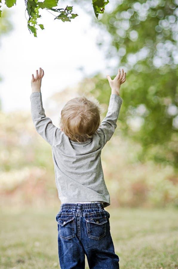 Kleinkind, das oben erreicht stockfotografie