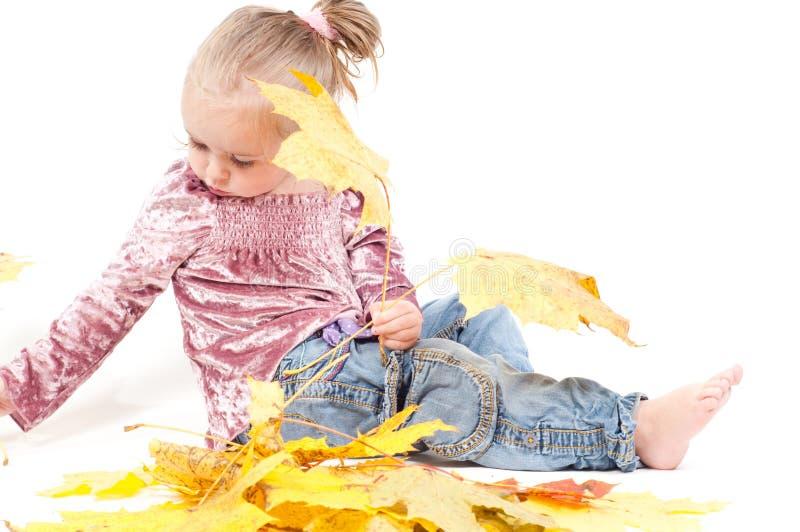 Kleinkind mit Ahornblättern lizenzfreie stockbilder