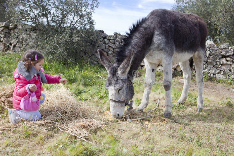 Kleinkind und Esel stockfotos