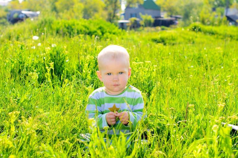 Kleinkindbaby auf Sommergrashintergrund stockbild