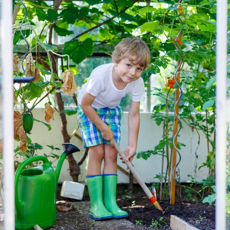 Kleinkindjunge, der mit Gartenhacke im Gewächshaus arbeitet lizenzfreie stockfotos
