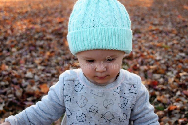 Kleinkindmädchen, das hinunter Außenseite mit Blättern schaut stockbild