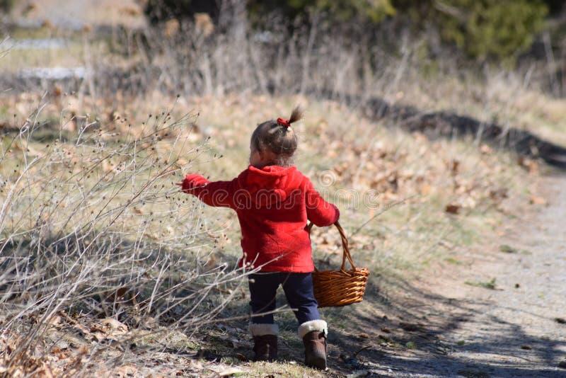Kleinkindmädchen, das zum Korb zusammentritt lizenzfreie stockfotos