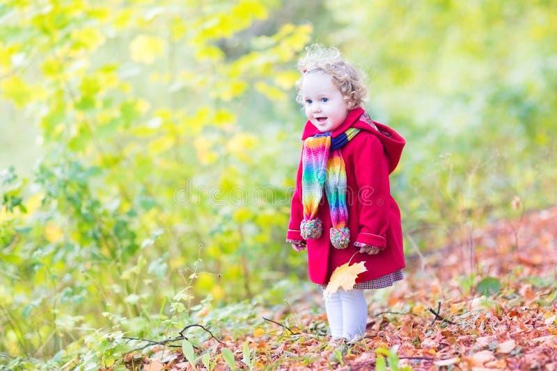 Kleinkindmädchen in einem roten Mantel mit gelben Ahornblättern stockfotografie