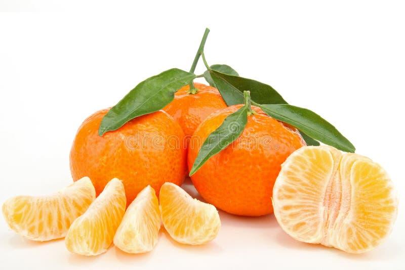 Klementine stockbilder