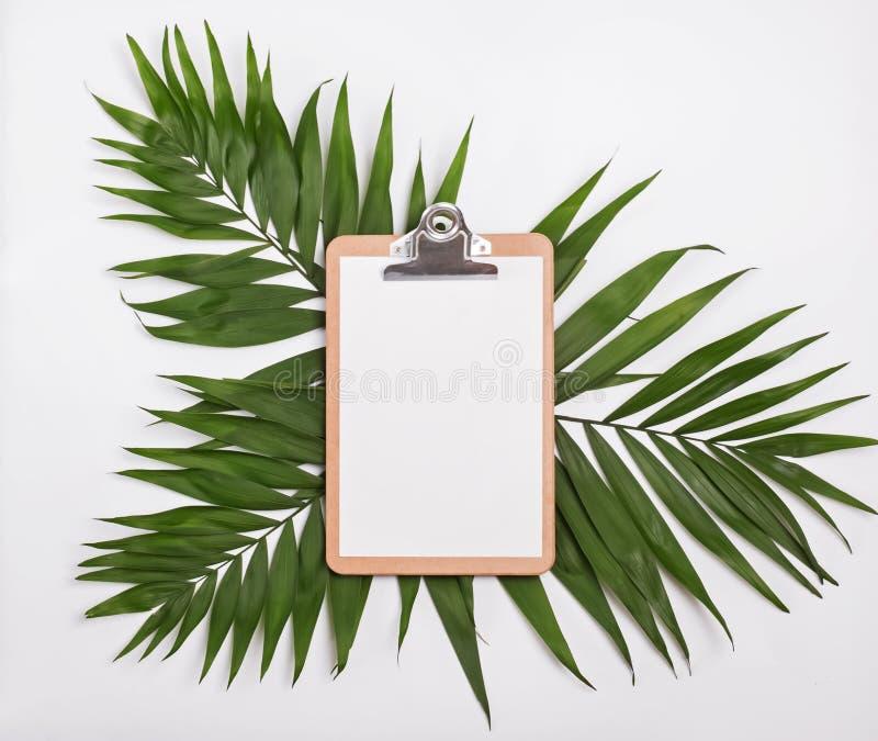 Klemmbrettmodell auf grünen Palmblättern lizenzfreies stockfoto