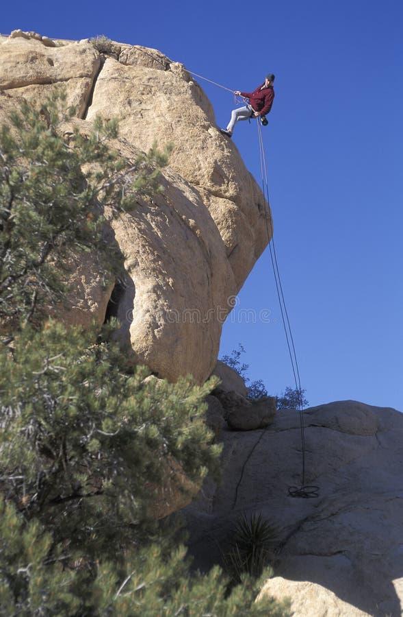 Klettern bei Joshua Tree National Park, Kalifornien stockfotografie