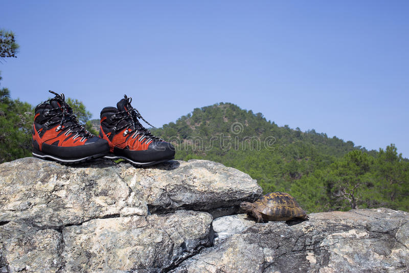 kletternde Schuhe stockfotografie