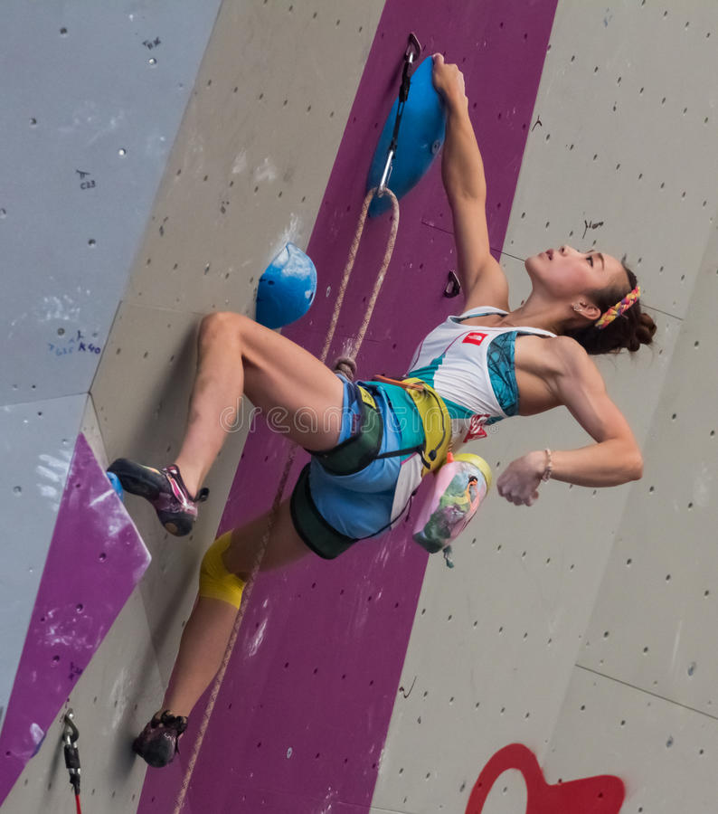 Kletternde Weltmeisterschaft stockfotografie
