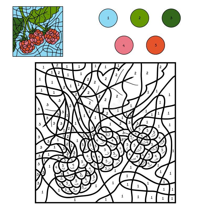 Kleur door aantal: framboos royalty-vrije illustratie