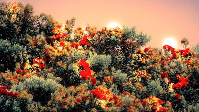Kleur op boom stock fotografie