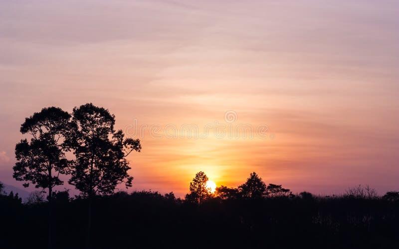 Kleur van de zonsopgang royalty-vrije stock afbeelding