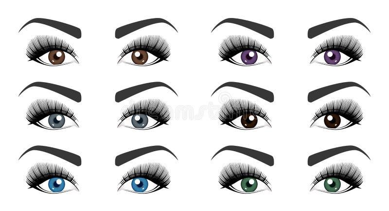Kleur van menselijke ogen Reeks open vrouwelijke ogen met mooie lange wimpers en modieuze die wenkbrauwen op witte achtergrond wo royalty-vrije illustratie