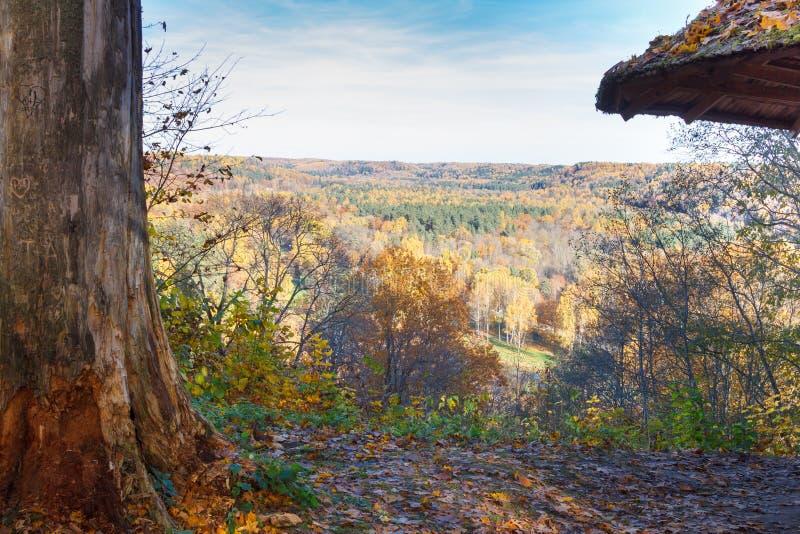 Kleuren van de herfst in Sigulda stock foto's
