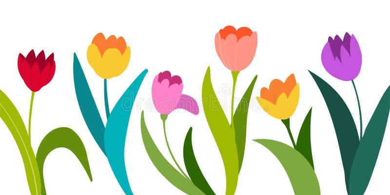 Kleuren vectordietulpen op witte achtergrond worden ge?soleerd Bloemen in verschillende vormen voor uw ontwerp en groeten, prentb stock illustratie