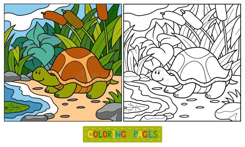 Kleurend boek (schildpad) royalty-vrije illustratie