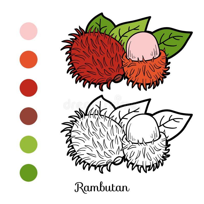 Kleurend boekspel: (rambutan) vruchten en groenten stock illustratie