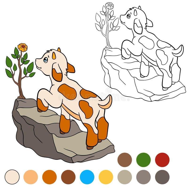 Kleurende pagina Kleur me: geit Weinig leuke babygeit stock illustratie
