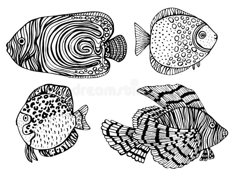 Kleurende pagina Kleurend boek Kleuringsbeeld met inzameling van tropische vissen Antistressschetstekening uit de vrije hand vector illustratie