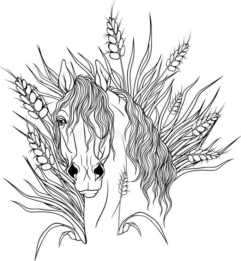 Kleurende pagina met een portret van een paard royalty-vrije illustratie