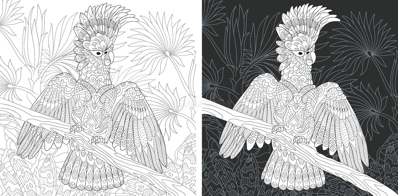 Kleurende pagina met kaketoepapegaai vector illustratie