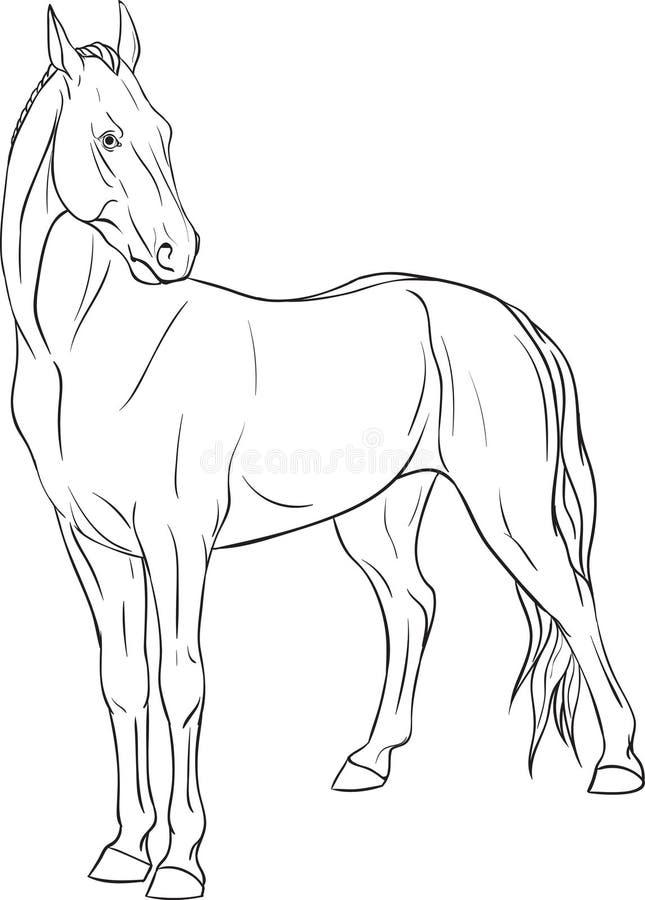 Kleurende pagina met paard royalty-vrije illustratie