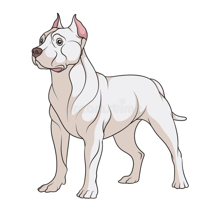 Kleurenillustratie van een hond van de kuilstier geïsoleerd vectorvoorwerp royalty-vrije illustratie