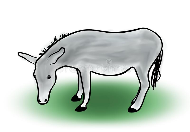 Kleurenschets van grijze ezel op witte achtergrond, overzichtshand geschilderde tekening stock illustratie