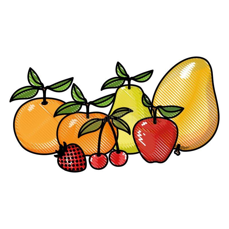 Kleurpotloodsilhouet van kleurrijke tropische vruchten royalty-vrije illustratie