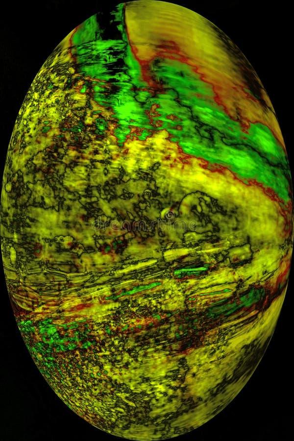 Kleurrijk, abstract, ei gevormde micrograaf van mosbladeren royalty-vrije stock afbeeldingen