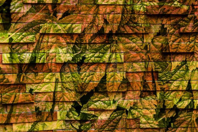 Kleurrijk abstract patroon uniek ontwerp vector illustratie