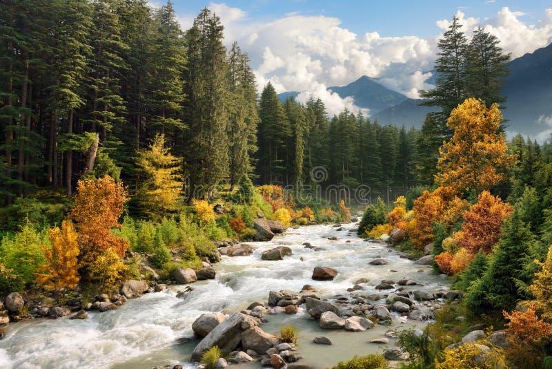 Kleurrijk berglandschap in de herfst stock fotografie