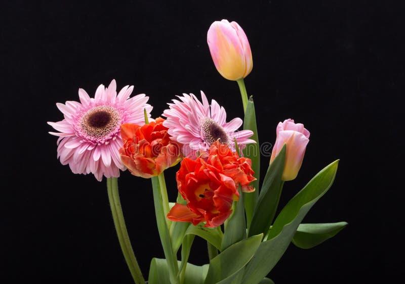 Kleurrijk boeket van verse de lentetulpen en gerberabloemen royalty-vrije stock afbeelding