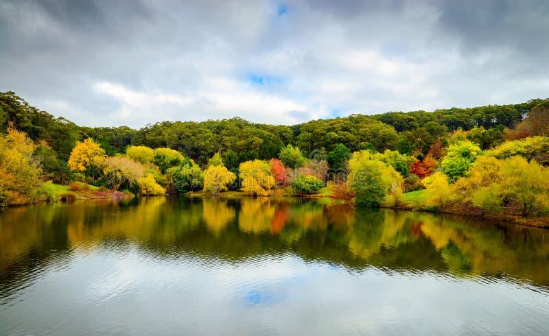 Kleurrijk de herfstlandschap met bezinningen stock foto's