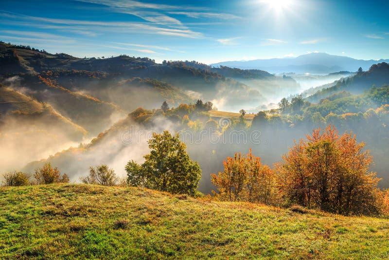 Kleurrijk de herfstlandschap met nevelige vallei, Holbav, Transsylvanië, Roemenië, Europa stock foto