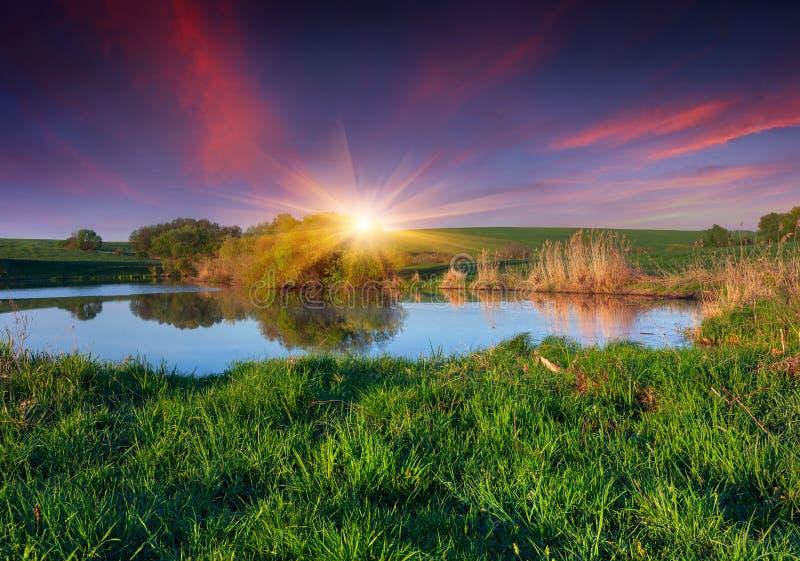 Kleurrijk de lentelandschap bij de visserij van vijver. stock foto's