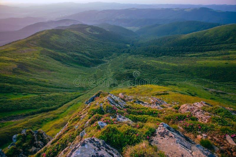 Kleurrijk de zomerlandschap in de Karpatische bergen De oppervlakte van de steen stock fotografie