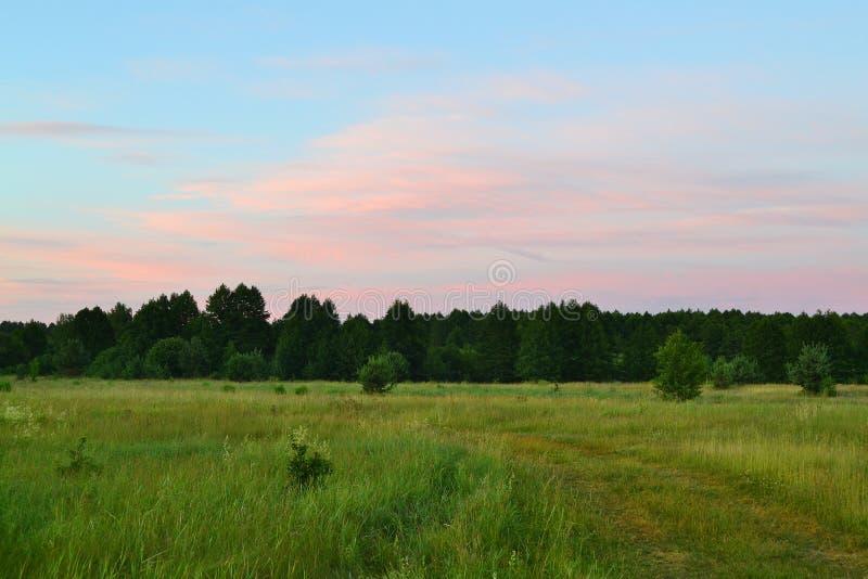 Kleurrijk de zomerlandschap Rood zonsondergang boslandschap Aard horizontaal landschap Schilderachtige, toneelmeningsachtergrond  royalty-vrije stock foto's