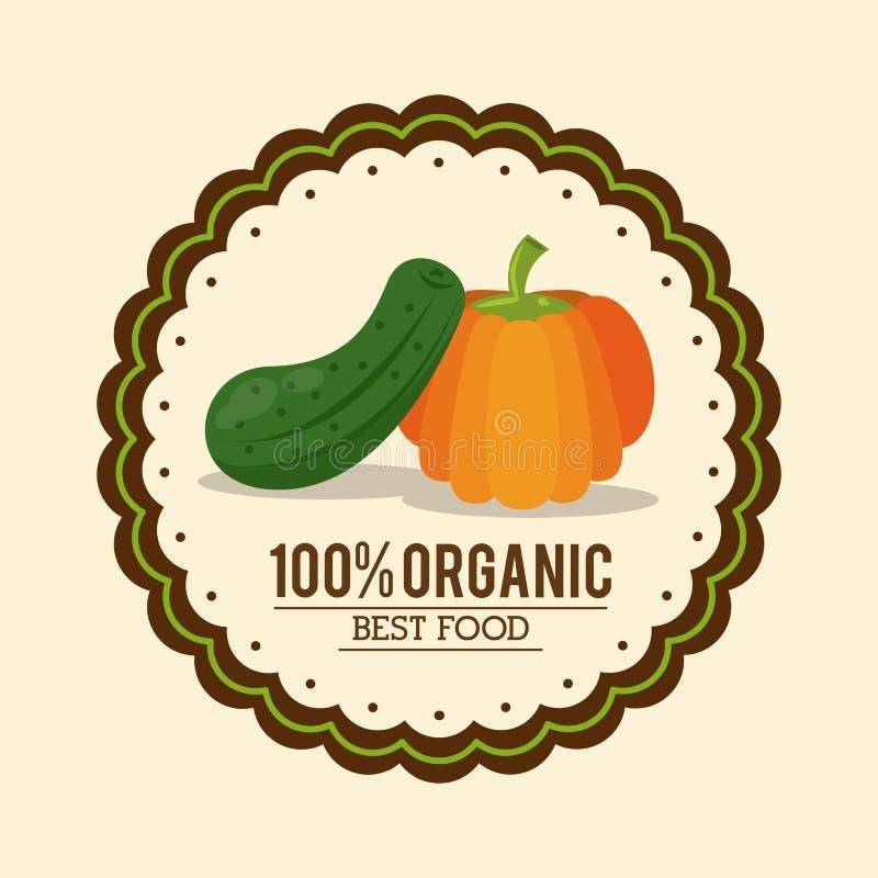 Kleurrijk embleem van organisch beste voedsel met komkommer en pompoen royalty-vrije illustratie