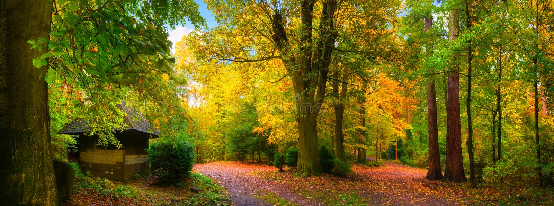 Kleurrijk en rustig de herfstlandschap stock fotografie
