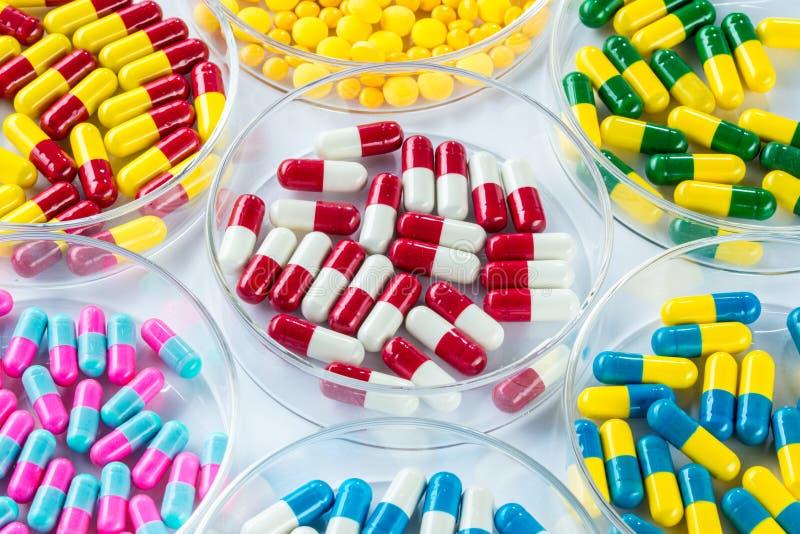 Kleurrijk geneesmiddel in Petri Dish, Gezondheidszorg en Geneeskunde stock foto