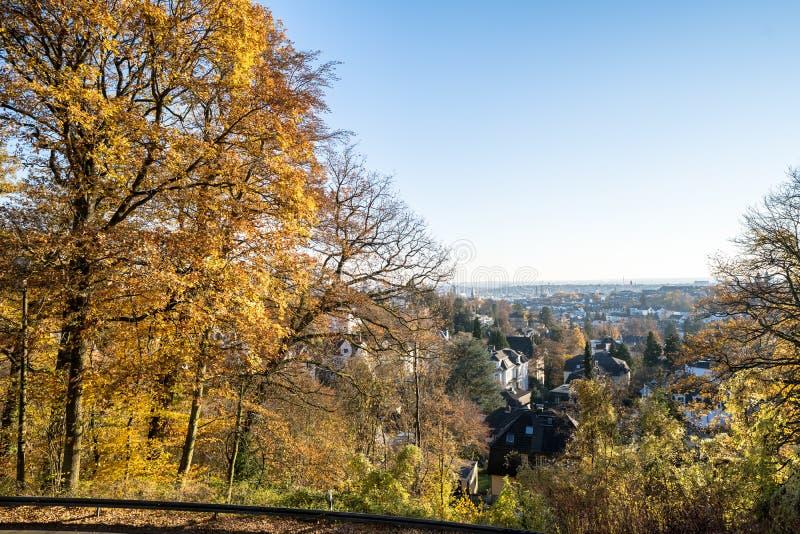 Kleurrijk herfstpark met bomen in Wiesbaden, Duitsland stock foto