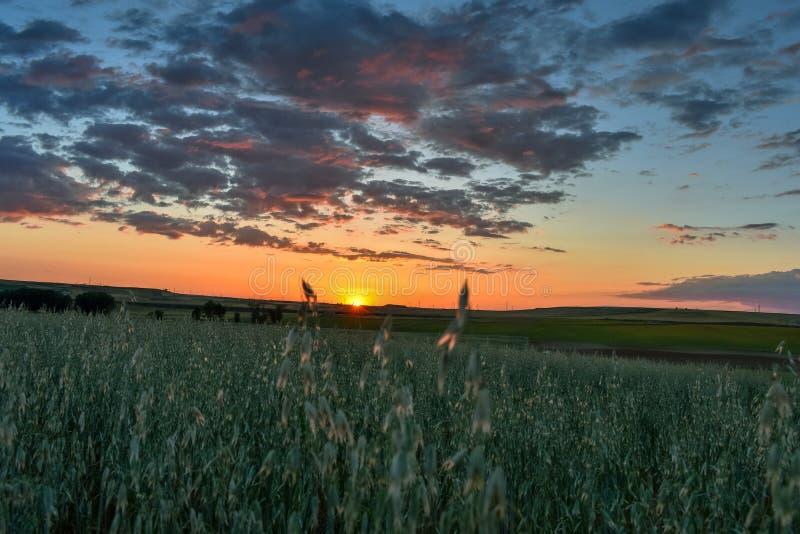 Kleurrijk landschap van zonsondergang in landbouwgrond Vrijheidssensatie royalty-vrije stock foto