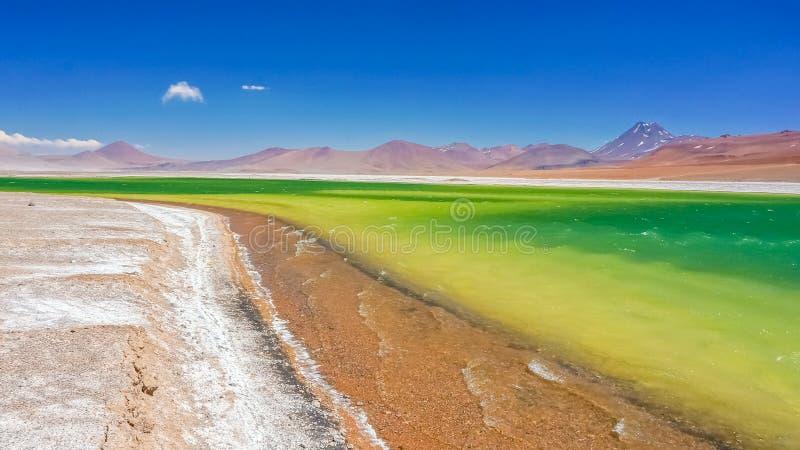 Kleurrijk meer in Atacama-Woestijn stock fotografie