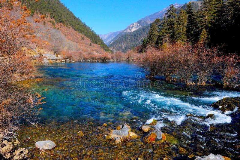 Kleurrijk meer in Jiuzhaigou, China stock afbeelding