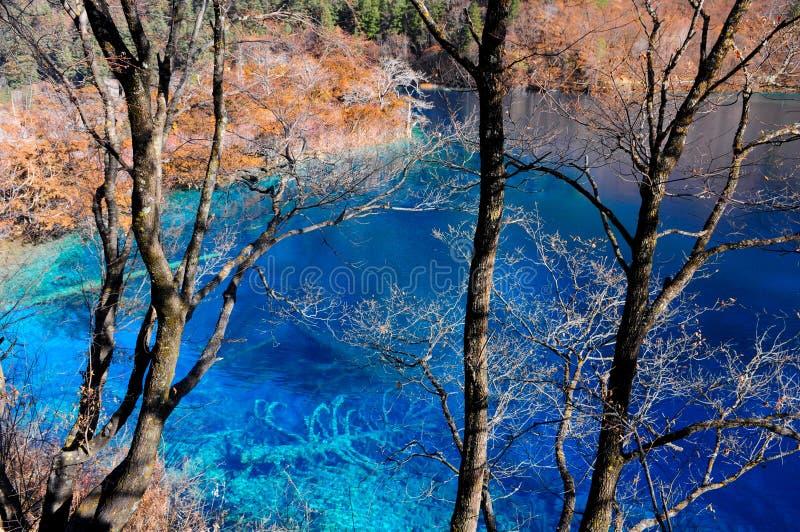 Kleurrijk meer in Jiuzhaigou, China royalty-vrije stock foto