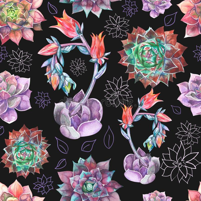 Kleurrijk Naadloos patroon met succulentsinstallaties Perfectioneer voor uw project, huwelijk, groetkaart, verpakking, behang royalty-vrije stock fotografie