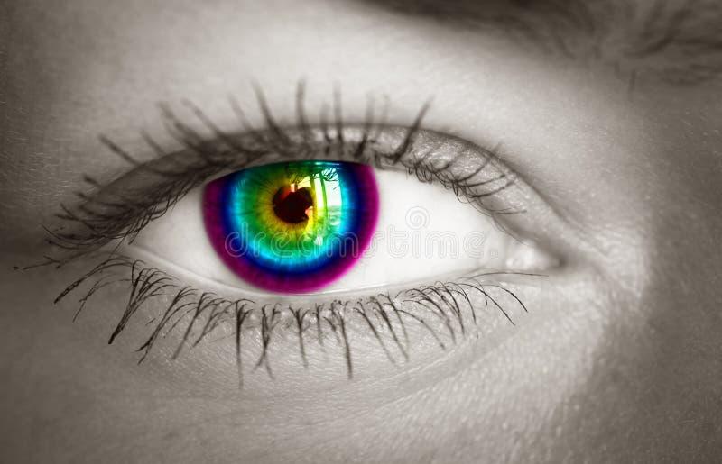 Download Kleurrijk oog. stock afbeelding. Afbeelding bestaande uit eyeball - 39118259
