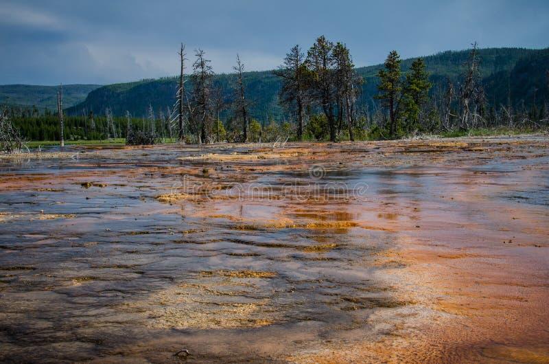 Kleurrijk oranje heet de lente geothermisch gebied binnen van het Nationale Park van Yellowstone stock foto's