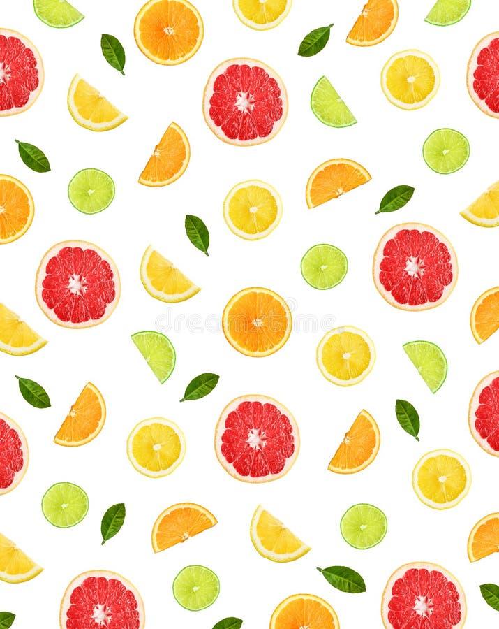 Kleurrijk patroon van citrusvruchten royalty-vrije stock foto's